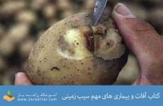 کتاب آفات و بیماری های مهم سیب زمینی