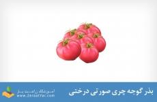 بذر گوجه چری صورتی درختی